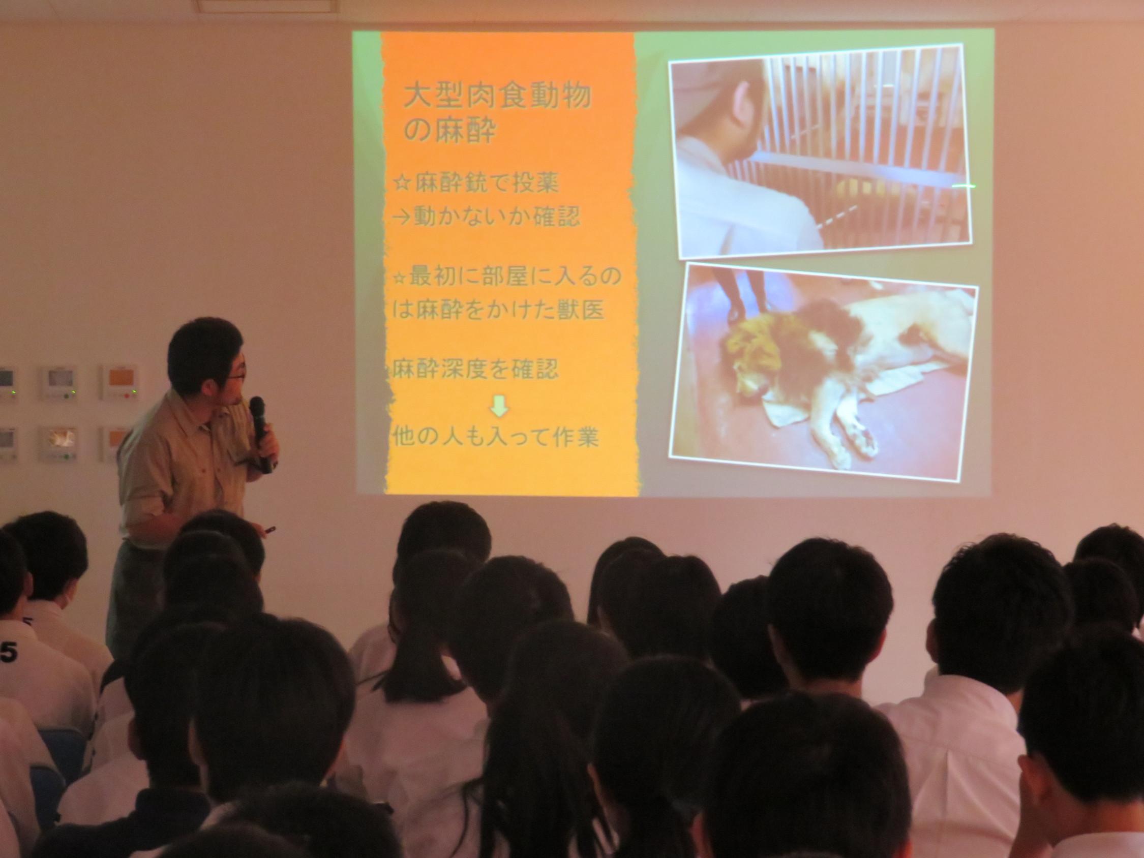 G8 安佐動物公園 獣医師 お仕事講座